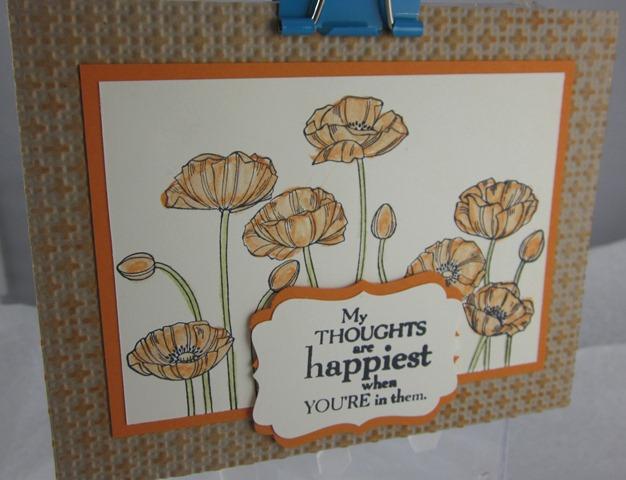 Pleasant poppies angela henson
