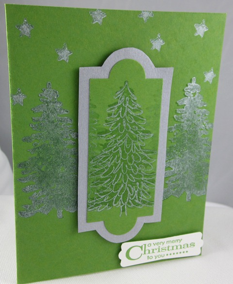Carol Payne Illluminate evergreen 1
