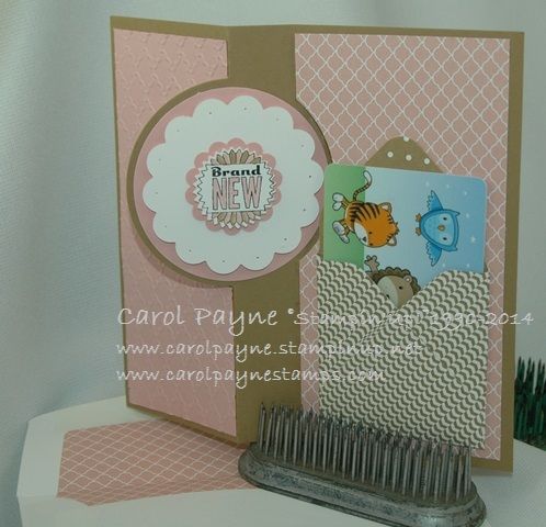 Stampin_up_baby_weve_grown_pink_3 - Copy