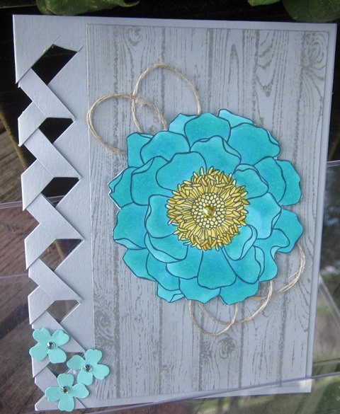 Stampin_up_blended_bloom_6