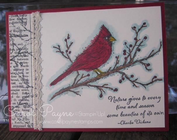 Stampin_up_beauty_of_the_season_1 - Copy