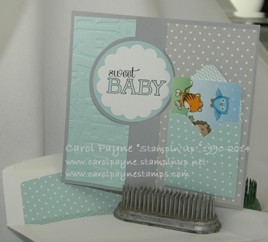 Stampin_up_baby_weve_grown_boy_2 - Copy