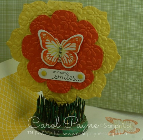 Stampin_up_backyard_basics_1 - Copy