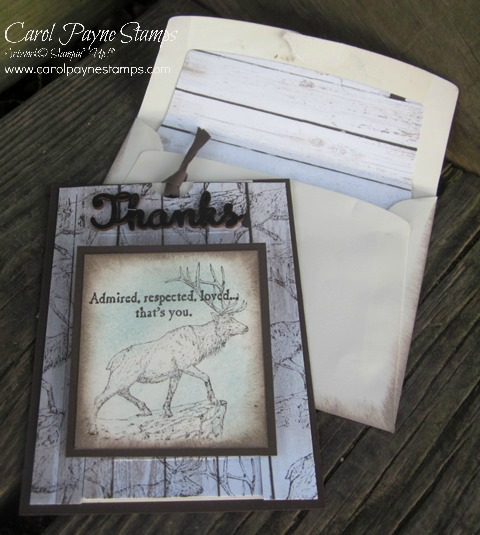 Stampin_up_the_wilderness_awaits_2 - Copy
