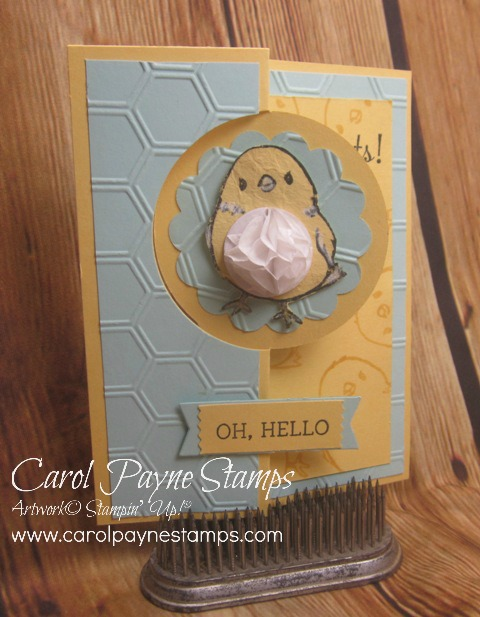 Stampin_up_honeycomb_hello_1_carol_payne_stamps - Copy