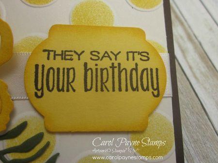 Stampin_up_suite_sayings_carolpaynestamps_5 - Copy