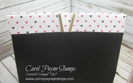 Stampin_up_pop_of_paradise_treat_bag_carolpaynestamps6 - Copy
