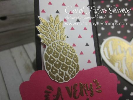 Stampin_up_pop_of_paradise_uneven_fold_carolpaynestamps2 - Copy