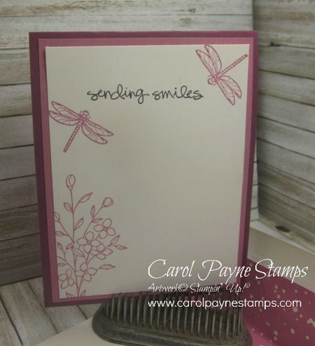 Stampin_up_touches_of_texture_carolpaynestamps4 - Copy