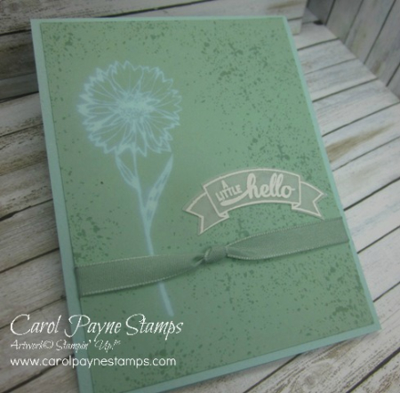 Stampin_up_touches_of_texture_bleach_carolpaynestamps1 - Copy