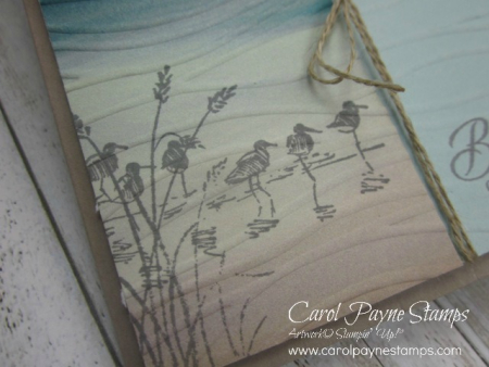 Stampin_up_wetlands_carolpaynestamps2 - Copy
