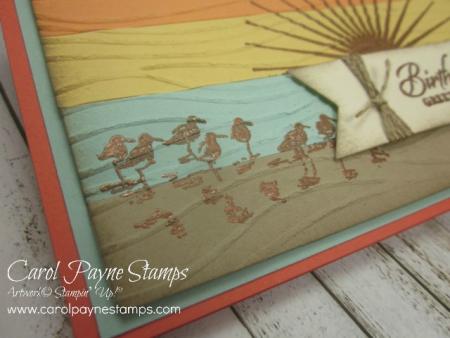 Stampin_up_wetlands_colorblocking_copper_carolpaynestamps2 - Copy