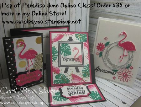 Stampin_up_pop_of_paradise_June_online_class_carolpaynestamps - Copy
