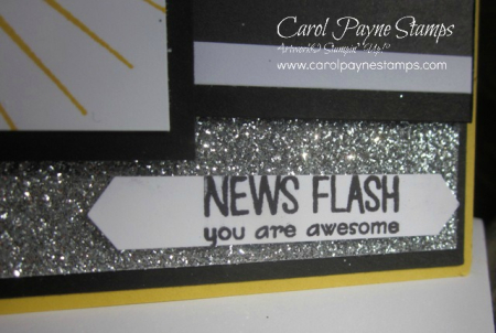 Stampin_up_pun_intended_camera_carolpaynestamps6