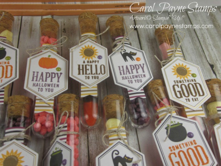 Stampin_up_paper_pumpkin_something_good_to_eat_test_tubes_carolpaynestamps4