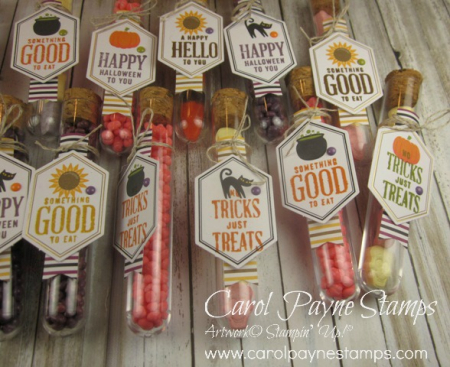 Stampin_up_paper_pumpkin_something_good_to_eat_test_tubes_carolpaynestamps5