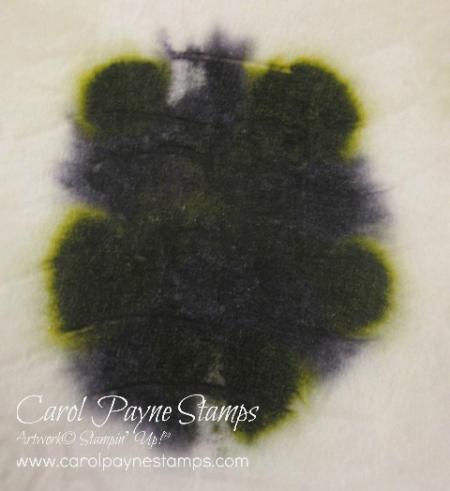 Stampin_up_christmas_pines_carolpaynestamps5