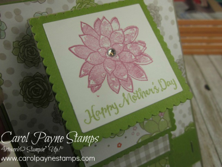 Stampin_up_oh_so_succulent_waterfall_carolpaynestamps2