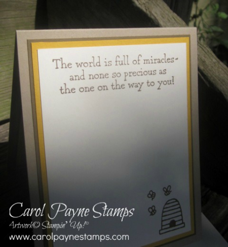 Stampin_up_a_little_wild_carolpaynestamps12