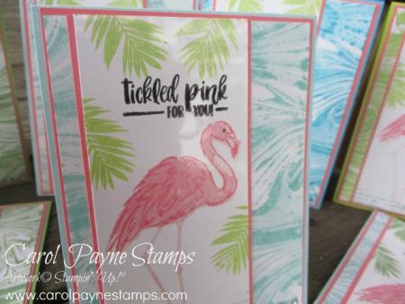 Stampin_up_fabulous_flamingo_carolpaynestamps6