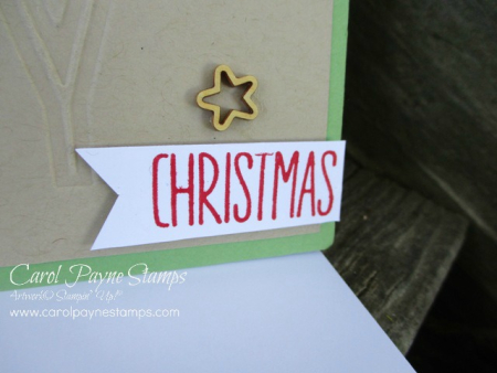 Stampin_up_swirly_bird_christmas_carolpaynestamps4