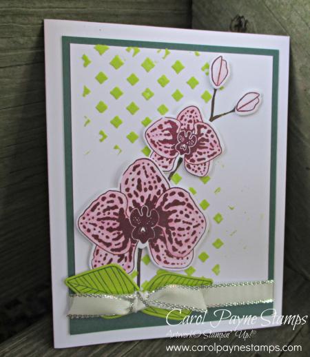 Stampin_up_climbing_orchid_carolpaynestamps1