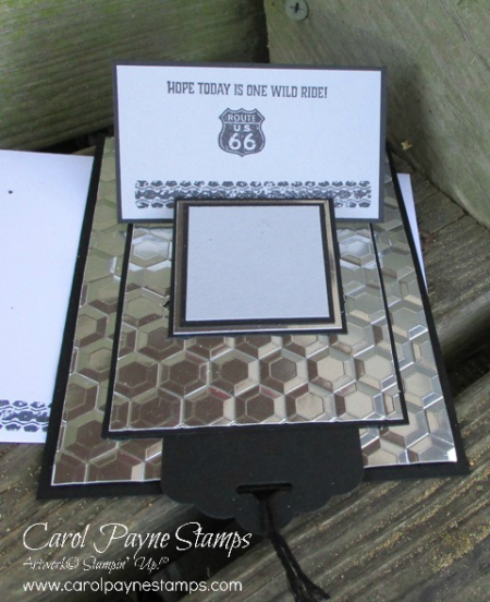 Stampin_up_one_wild_ride_carolpaynestamps3