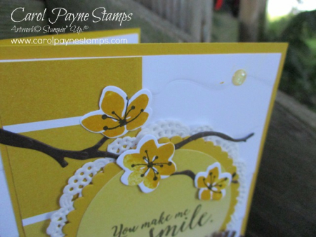 Stampin_up_colorful_seasons_smile_carolpaynestamps3