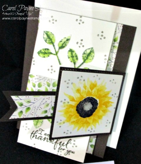 Stampin­­_up_painted_harvest_carolpaynestamps4