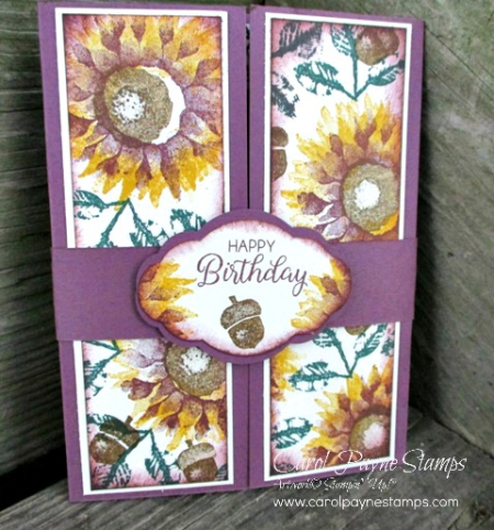 Stampin_up_painted_harvest_shutter_carolpaynestamps1