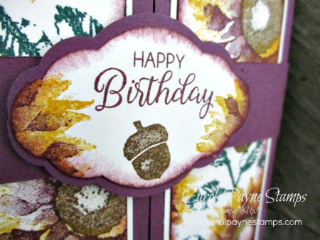 Stampin_up_painted_harvest_shutter_carolpaynestamps2