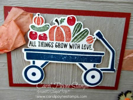 Stampin_up_grown_with_love_carolpaynestamps2