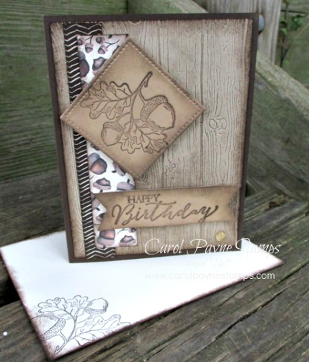 Stampin_up_count_my_blessings_carolpaynestamps1