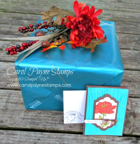 Stampin_up_you've_got_this_carolpaynestamps1