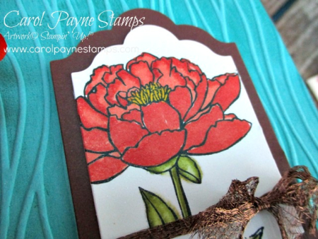 Stampin_up_youve_got_this_carolpaynestamps3