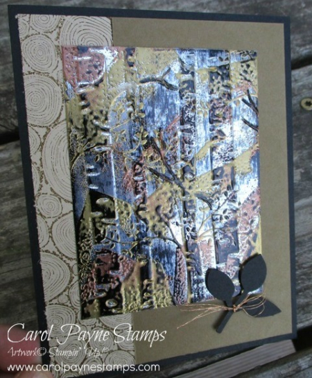 Stampin_up_tree_rings_carolpaynestamps1