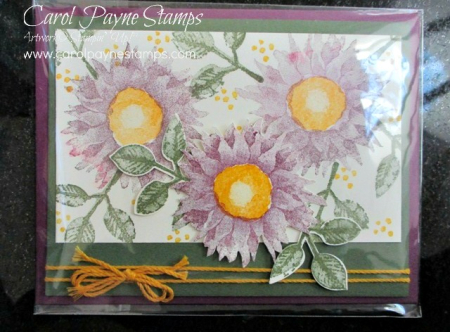 Stampin_up_painted_harvest_carolpaynestamps9