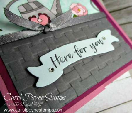Stampin_up_just_add_color_carolpaynestamps3