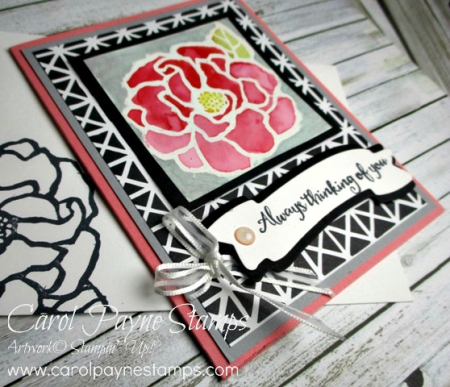 Stampin_up_beautiful_day_carolpaynestamps3