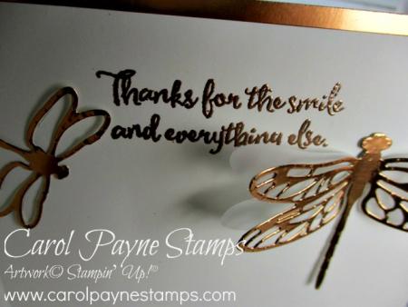 Stampin_up_dragonfly_dreams_carolpaynestamps5