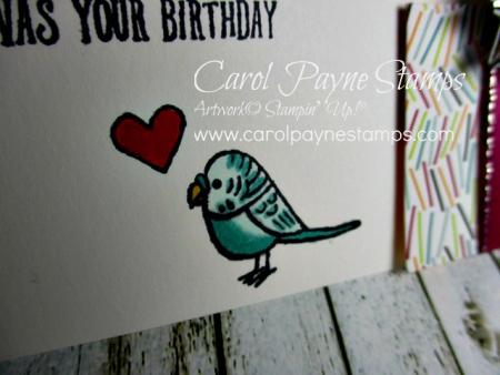 Stampin_up_bird_banter_birthday_carolpaynestamps2