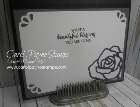 Stampin_up_rose_wonder_wisteria_3_carolpaynestamps