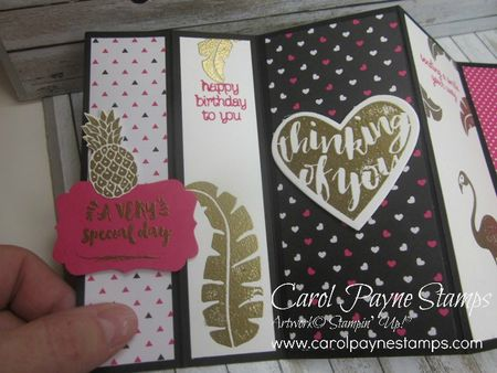 Stampin_up_pop_of_paradise_uneven_fold_carolpaynestamps3 - Copy