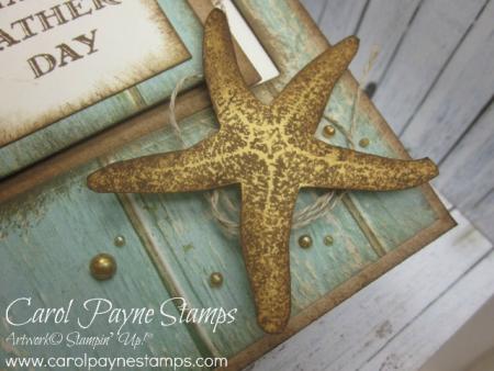 Stampin_up_picture_perfect_carolpaynestamps3 - Copy