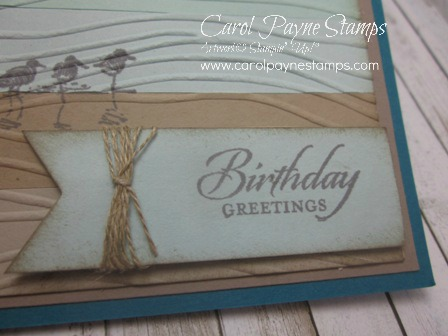 Stampin_up_wetlands_carolpaynestamps6 - Copy