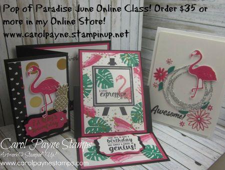 Stampin_up_pop_of_paradise_June_online_class_carolpaynestamps - Copy