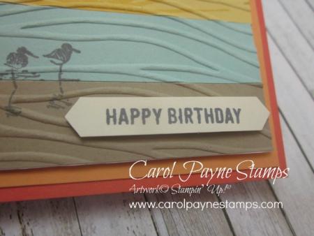 Stampin_up_wetlands_colorblocking_carolpaynestamps3 - Copy