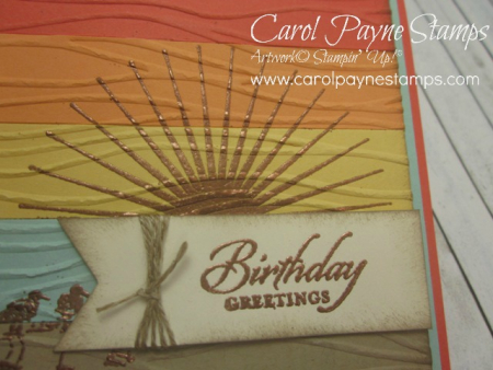 Stampin_up_wetlands_colorblocking_copper_carolpaynestamps3 - Copy