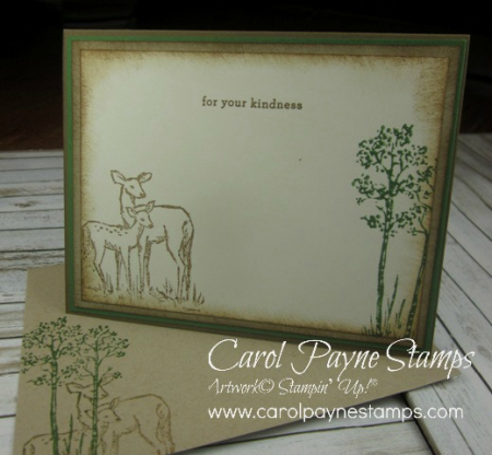 Stampin_up_in_the_meadow_carolpaynestamps4