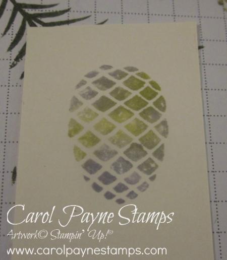 Stampin_up_christmas_pines_carolpaynestamps6